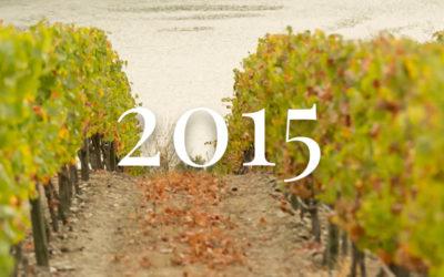 2015 grape harvest