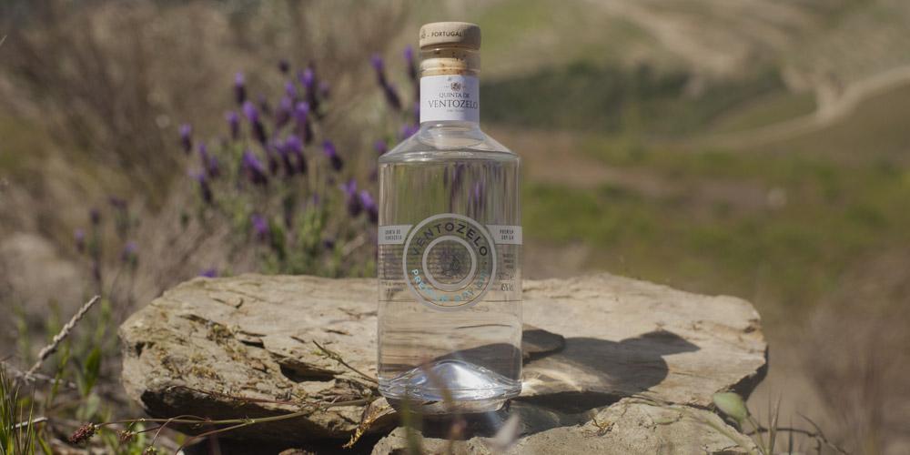 gin-de-ventozelo-aroma