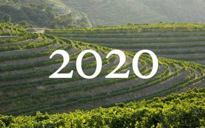 Vendanges de 2020